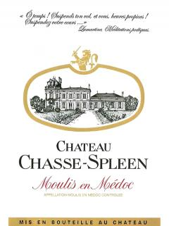 Château Chasse-Spleen 1982 Bouteille (75cl)